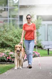 A blind woman with a guide dog.
