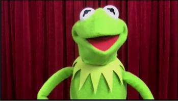 (Kermit the Frog From Video Still)