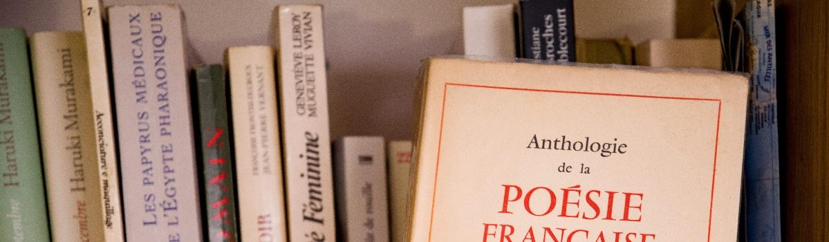 French bookshelf