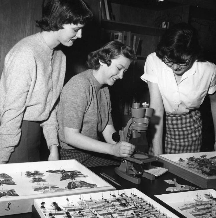 Students in biology class, Edgewood College 1959
