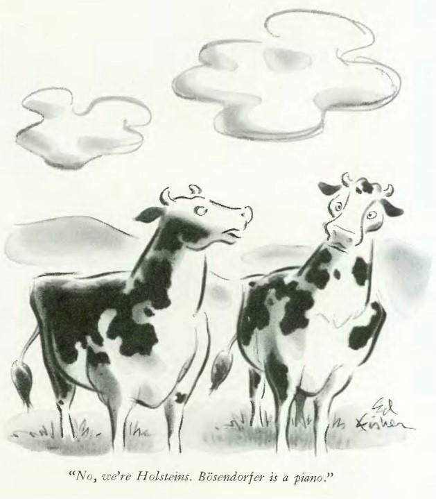 No, we're Holsteins. Bösendorfer is a piano.