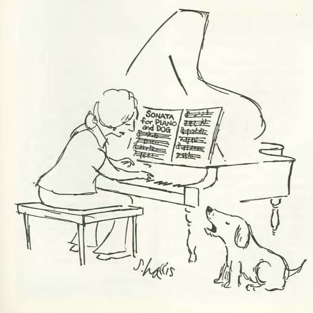 Sonata for Piano and Dog
