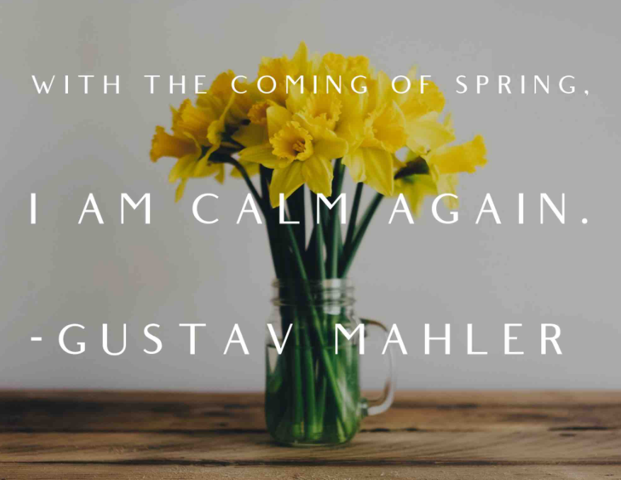 Quote by Gustav Mahler, with the coming of spring, I am calm again with a background of yellow flowers in a vase.