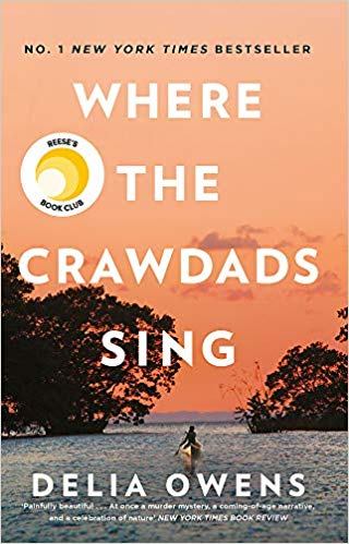 Where the crawdads sing novel