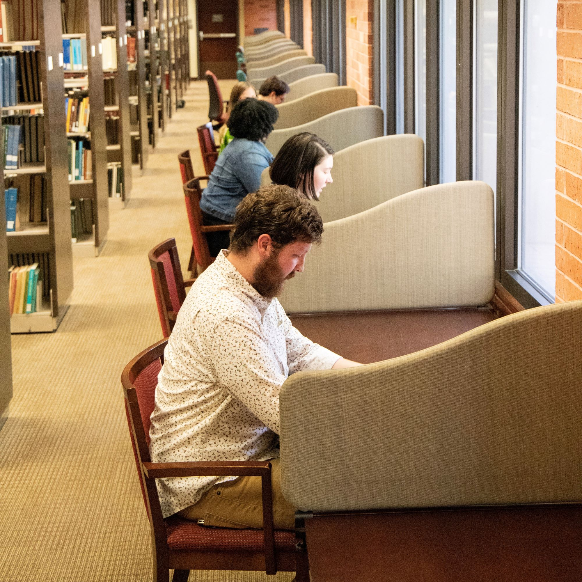 Image of students studying at cubicles.