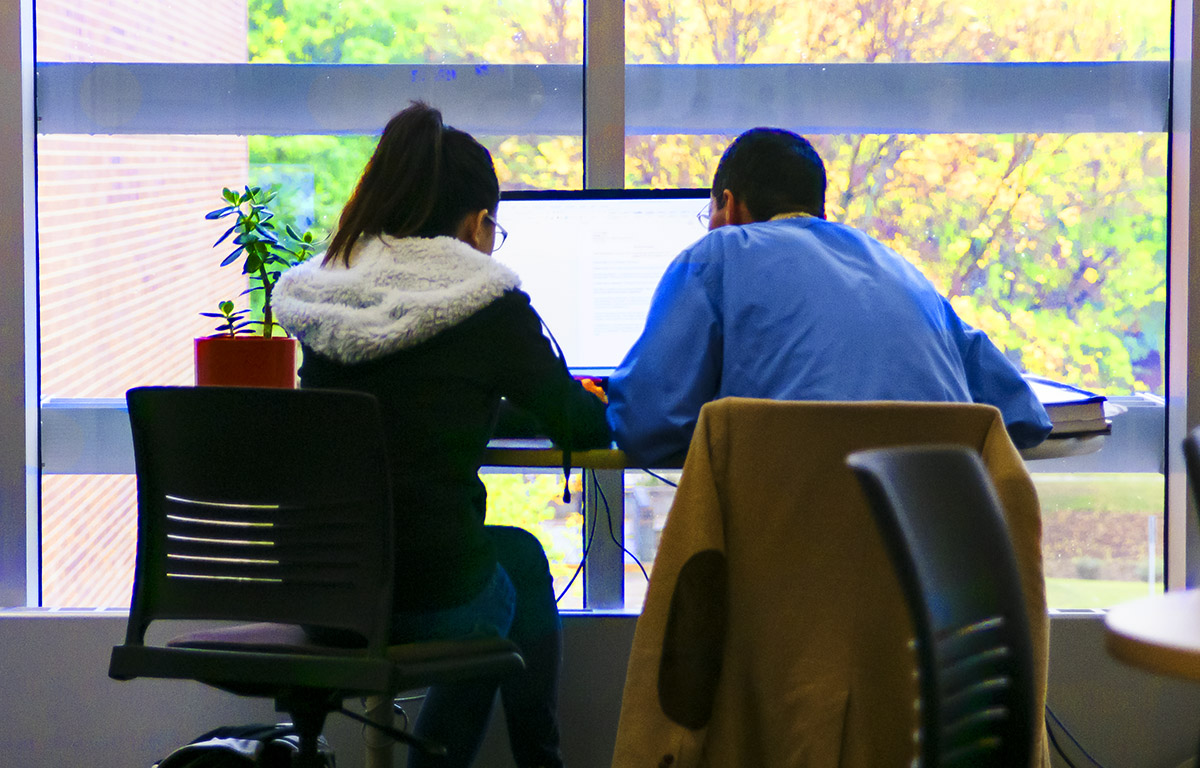 Photo of two students working at a computer workstation