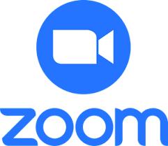 sm zoom icon