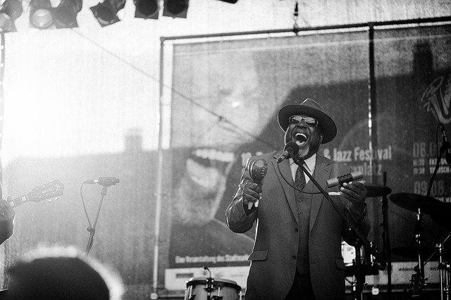 Jazz Musician at a Blues Concert