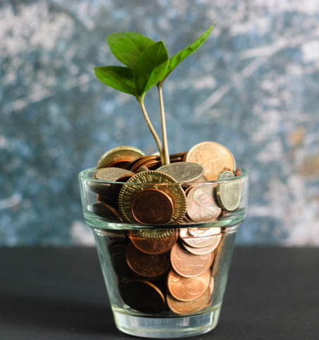 jar of coins with a budding sprout