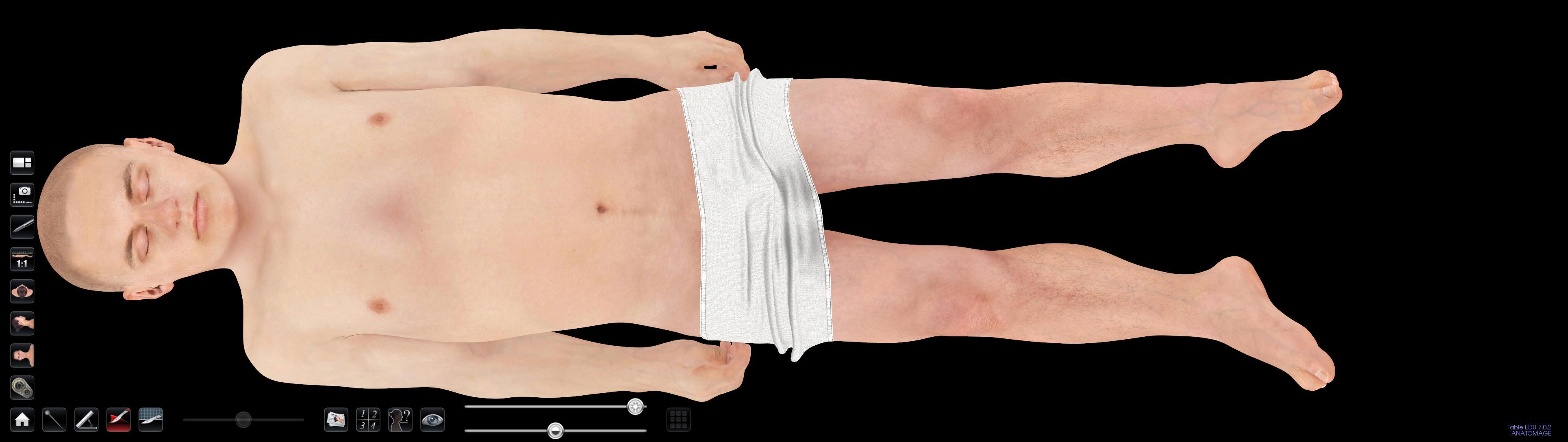 asian male body