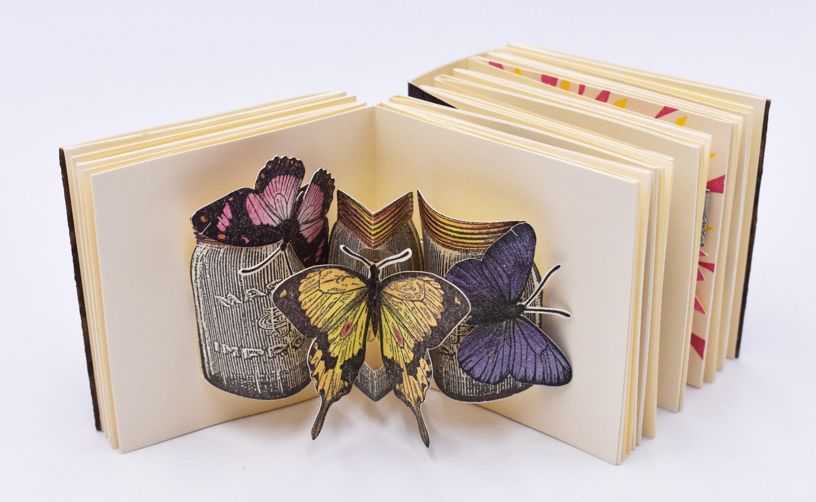 Image of folded accordion book with butterfly pop-up