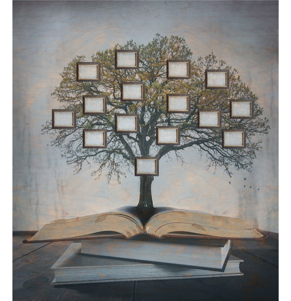 Family Tree and Books