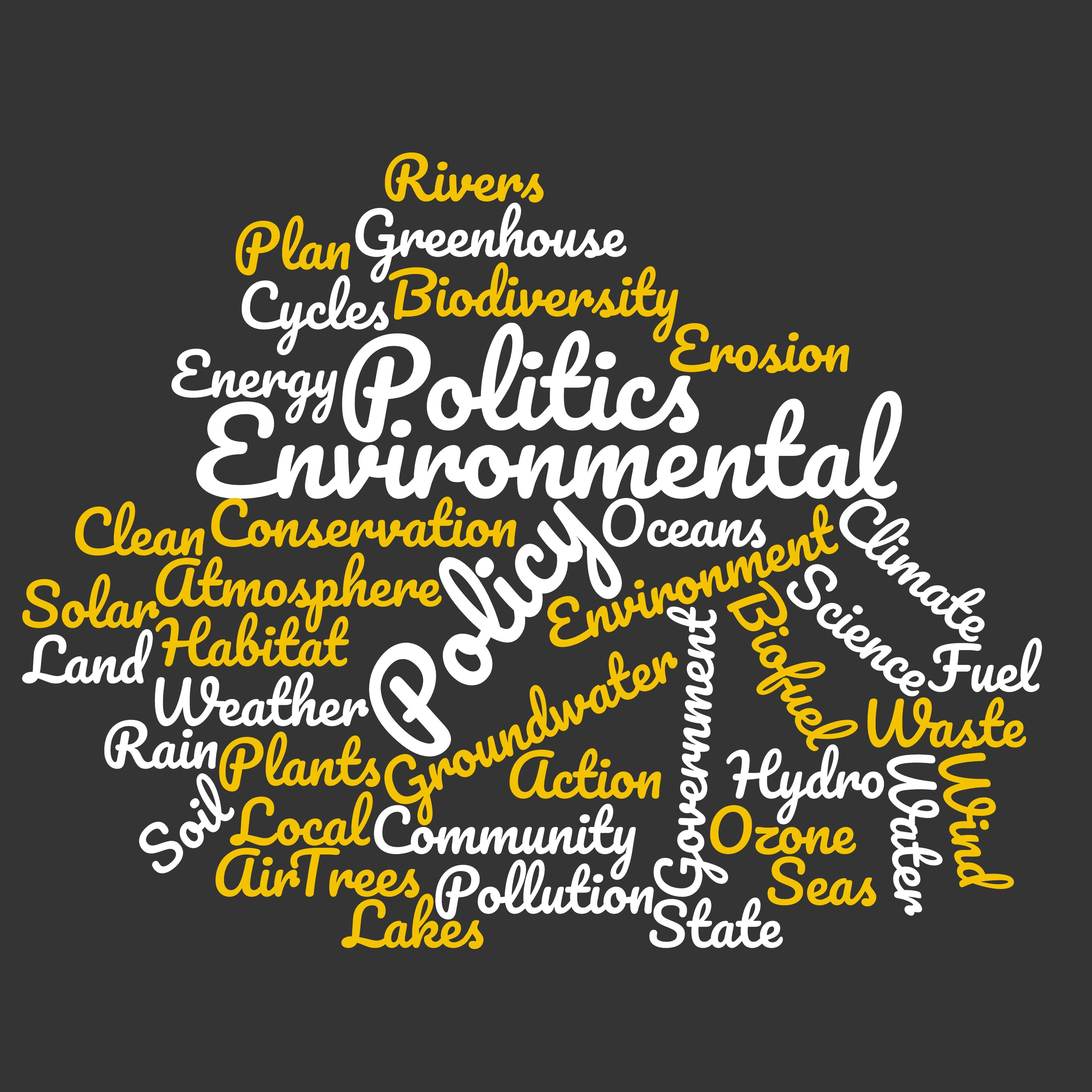 Environmental Politics Word Cloud