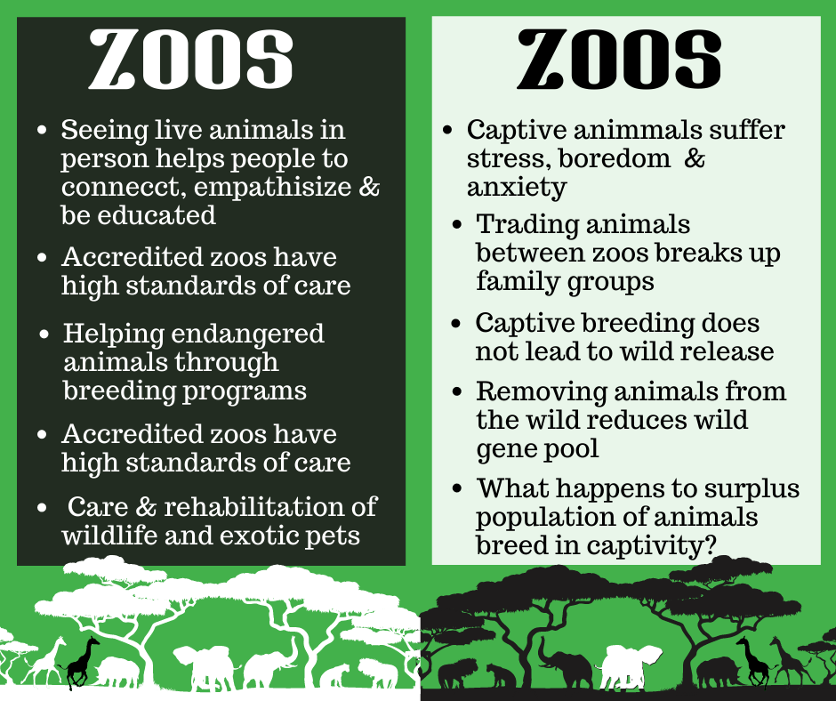 pros and cons of zoos info graphic