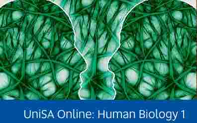Navigate to assignment help for: UniSA online human biology 1