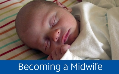 Navigate to assignment help for: becoming a midwife