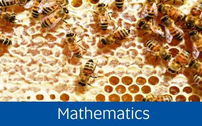 Navigate to mathematics page