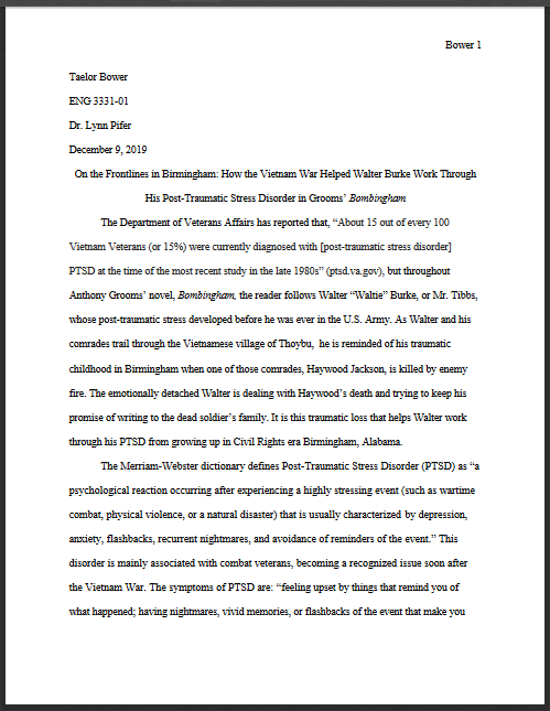 Civil rights novel paper