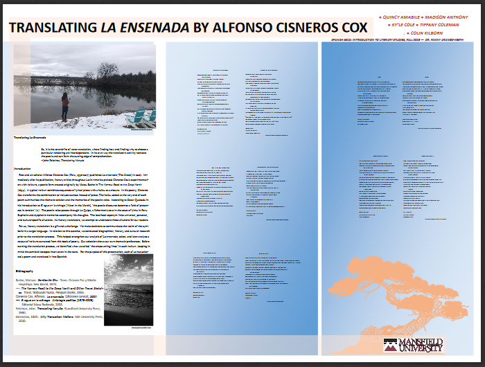 Translating La Ensenada poster