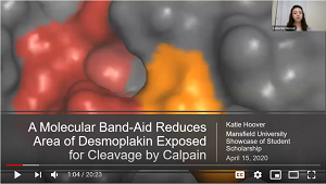 Desmoplakin Video Presentation