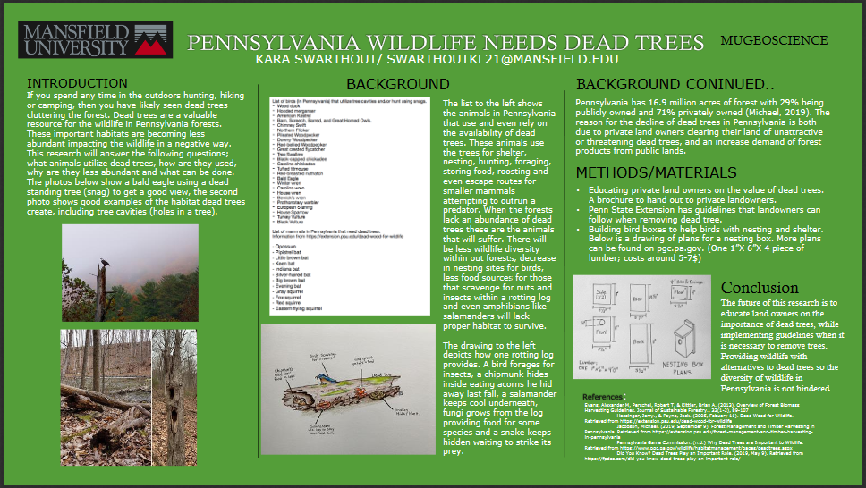 Wildlife need dead trees poster