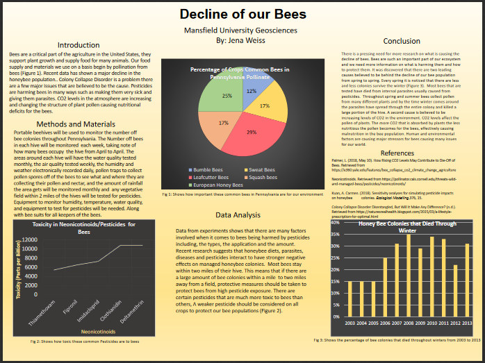 Decline of bee poster