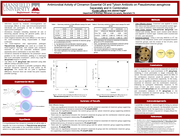 Antimicrobial poster
