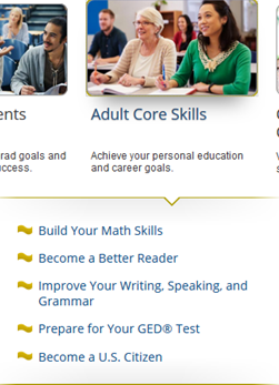 Screencapture of Adult Core Skills area in LearningExpress