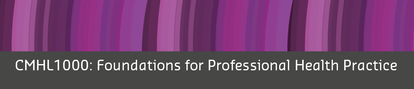CMHL1000 Foundations for Professional Health Practice