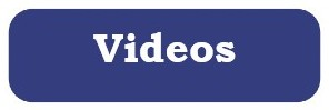 Search for dvds and online streaming videos