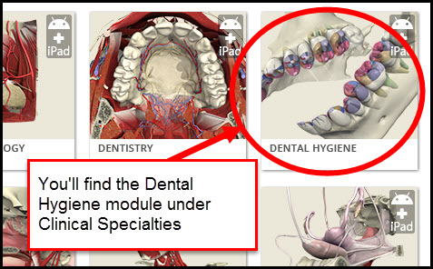 Anatomy.TV Clinical Specialties page screenshot with Dental Hygiene module circled stating You'll find the Dental Hygiene module under Clinical Specialties
