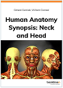 Human anatomy synopsis: Head and Neck cover and link