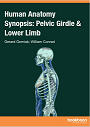 Human anatomy synopsis: pelvic girdle & lower limb cover and link