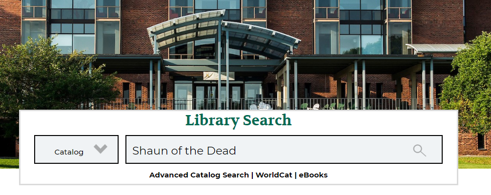 Library Catalog on the library homepage