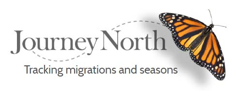 Journey North logo