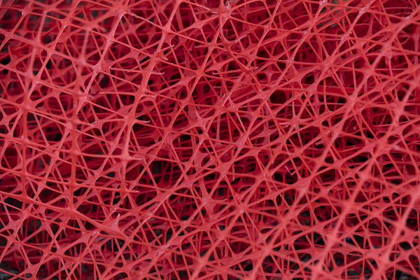 red plastic webbing