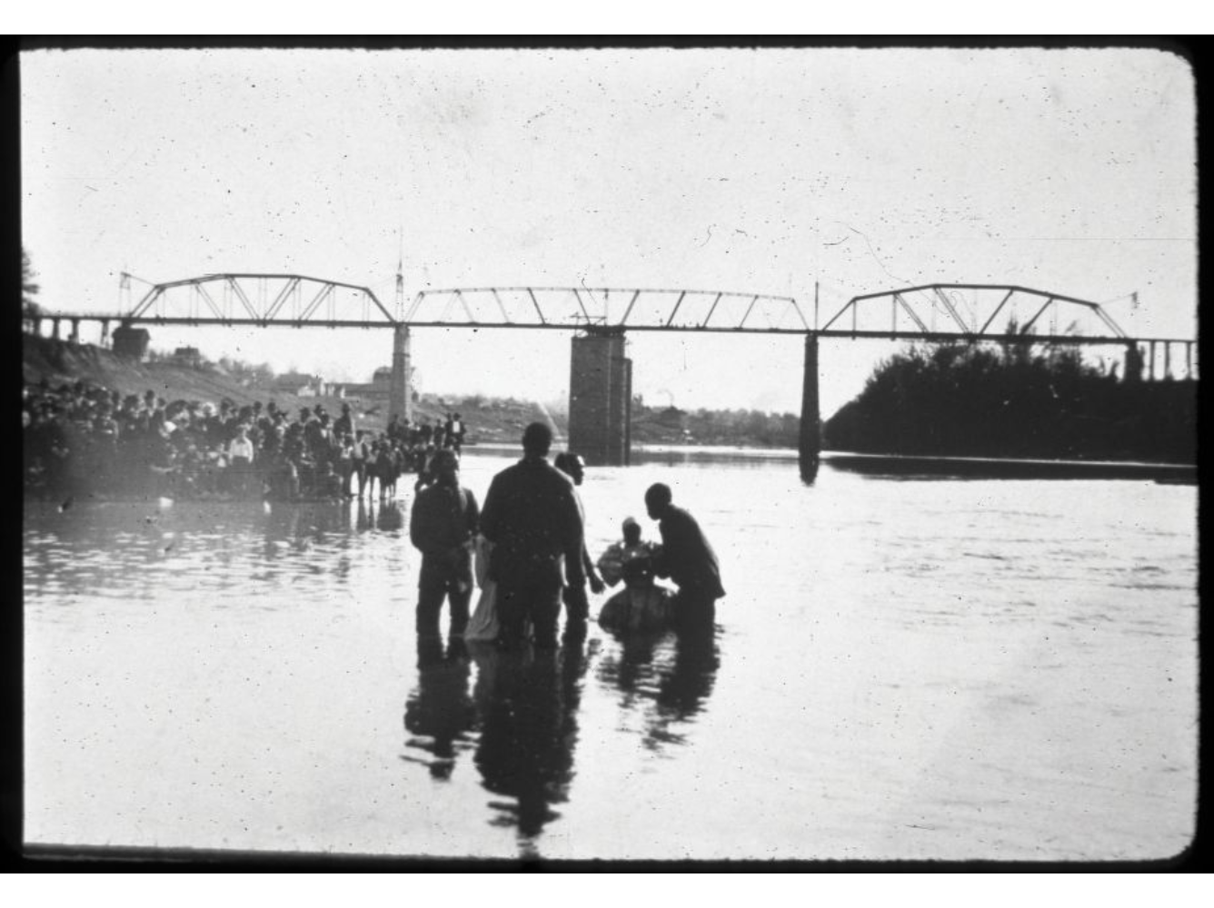 black and white photograph of a church baptismal service held on the Cumberland River with the Louisville & Nashville Railroad Bridge in the background. Participants are seen being submerged backwards into the water while church members watch along the bank of the river.
