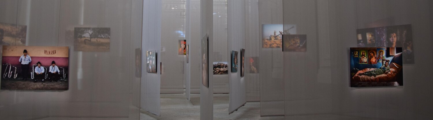 Paintings hanging on translucent screens in a gallery