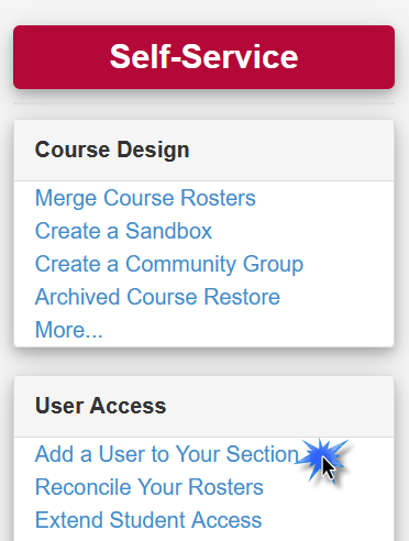"""Under Self-Service, User Access, click """"add a user to your section"""""""