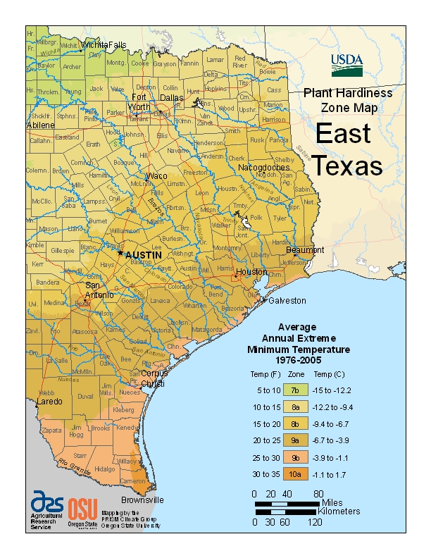USDA Hardiness zone map for east Texas
