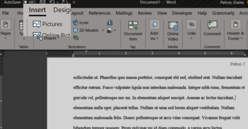 Word toolbar: Insert tab, Pictures