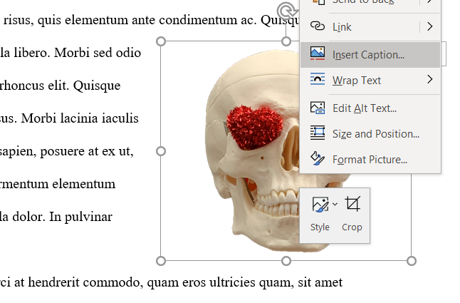 Right click menu options for image, selecting Insert Caption...