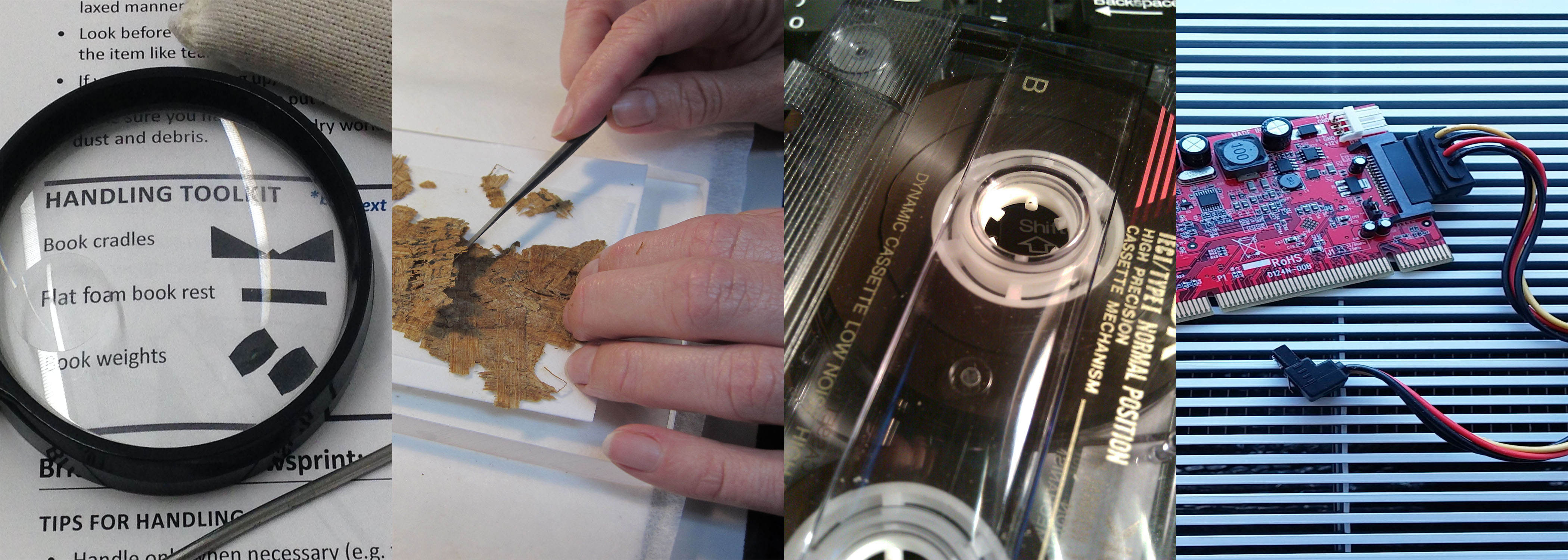 Preservation Week Lecture: Mold in Collections