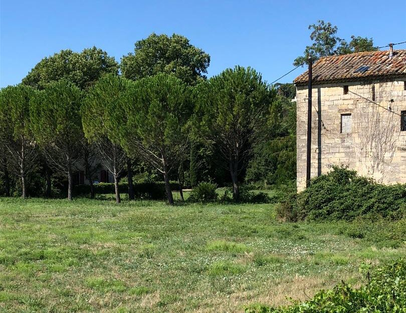Old french house in the middle of a field with trees.