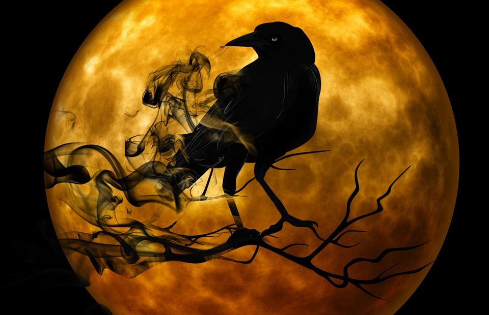 image of raven over orange full moon