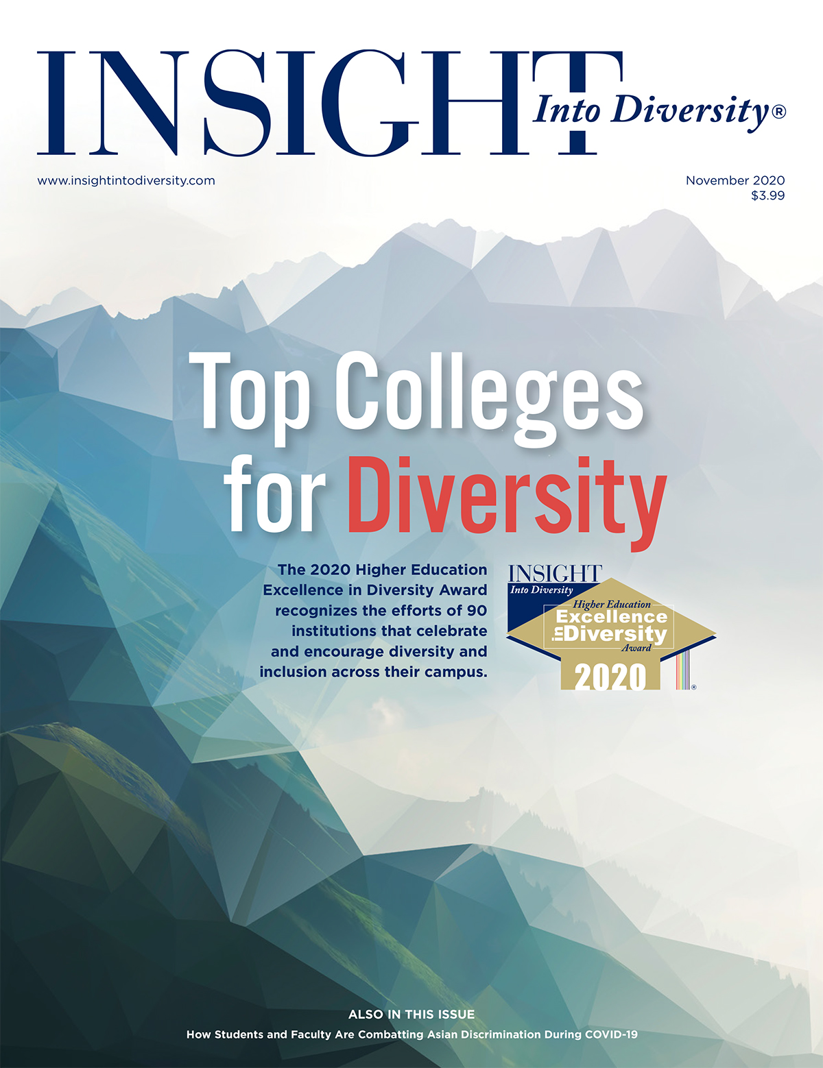 Cover of Insight into Diversity