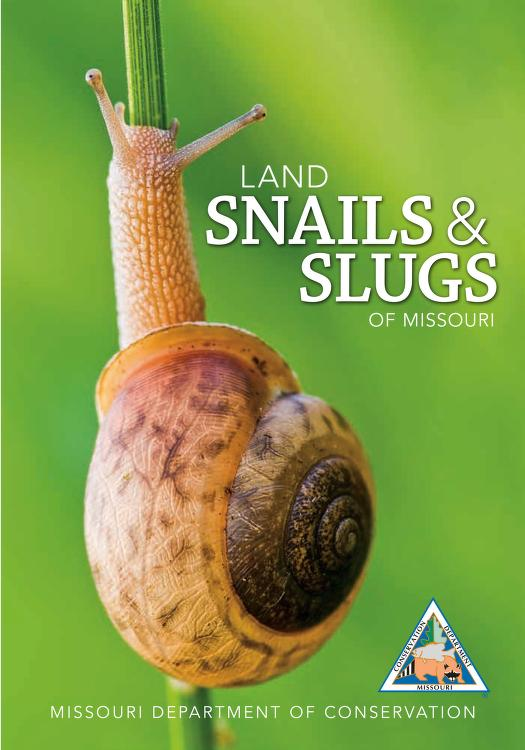 cover image of Land Snails & Slugs of Missouri. Click to view more publications.
