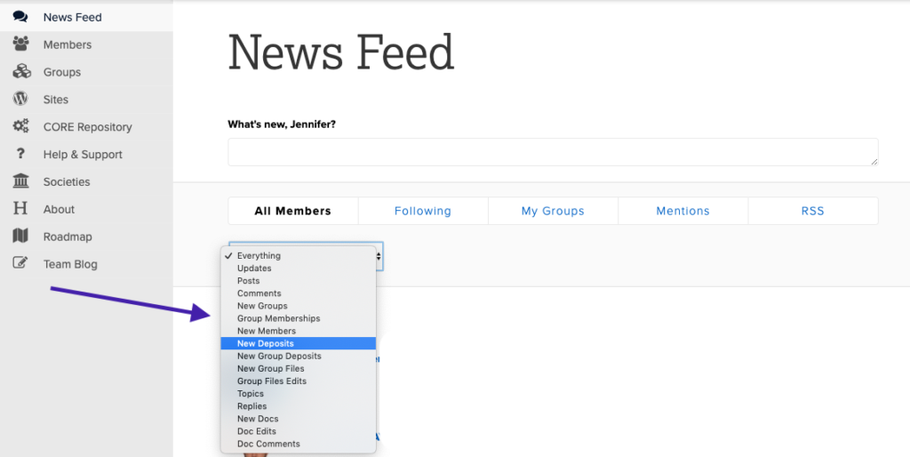 Screenshot of News Feed filters