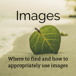 clickable button that will take you to the Using and Citing Images section of the guide.