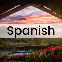 clickable button that will take you the section of this guide on Spanish language resources.